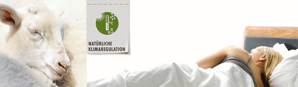 dormiente-Natuerliche-Klimaregulation-1024x299px