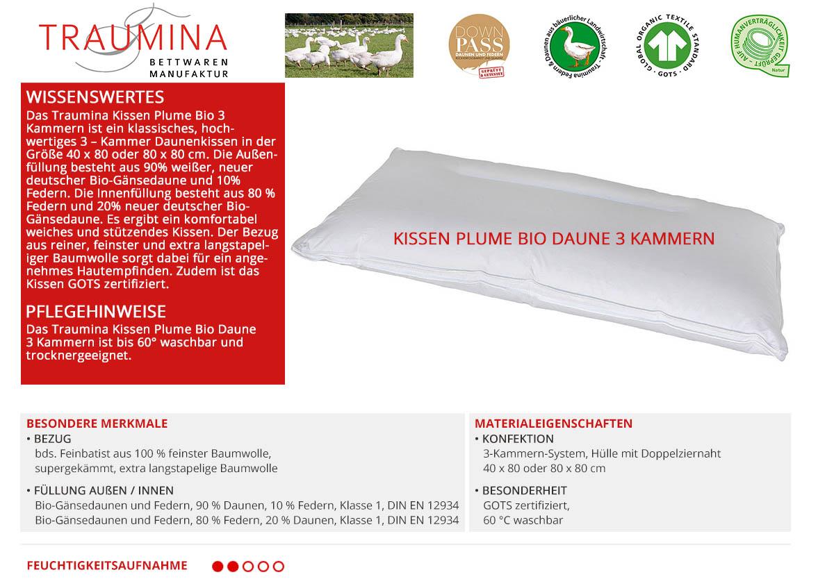 Traumina-Kissen-Plume-Bio-Daune-3-Kammern-online-kaufen
