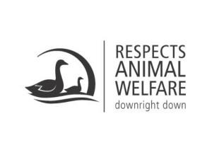 Kauffmann-Decken-und-Kissen-respects-animal-welfare-300x212