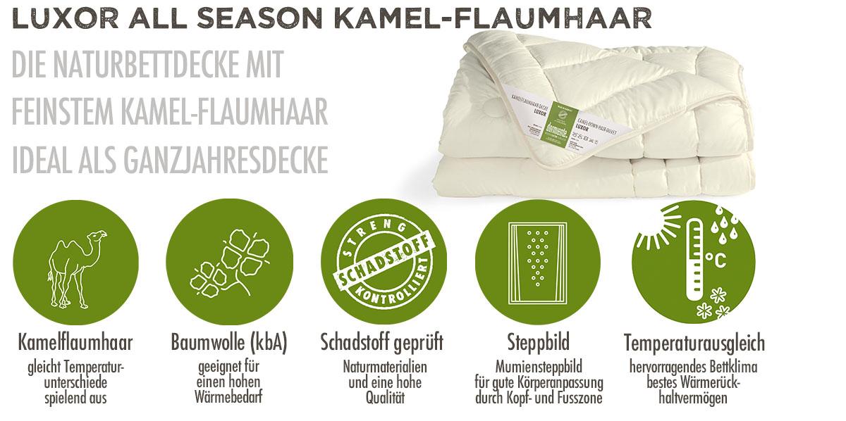 Dormiente-Luxor-Season-Kamelflaumhaar-Ganzjahresdecke-online-kaufen