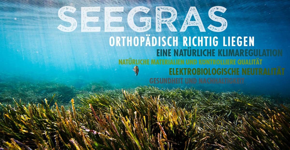 Dormiente-Seegrass-Matratze-Natur-Pur-Deluxe-online-kaufen