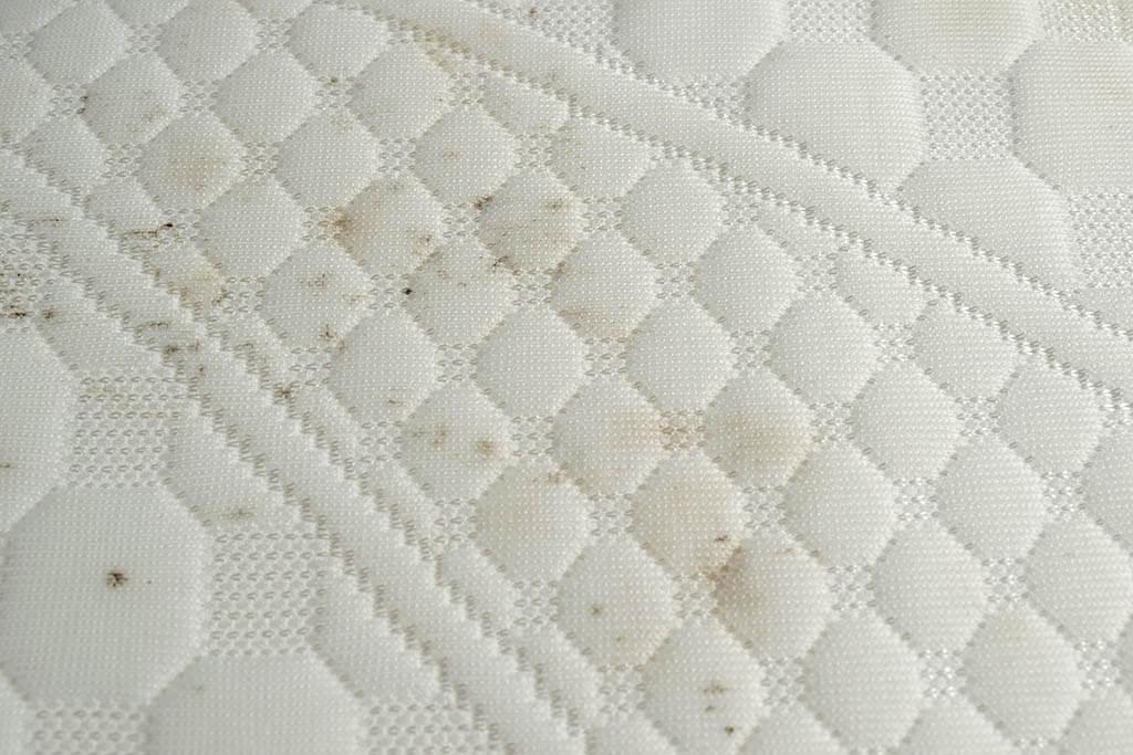 Stockflecken-von-der-Matratze-entfernen