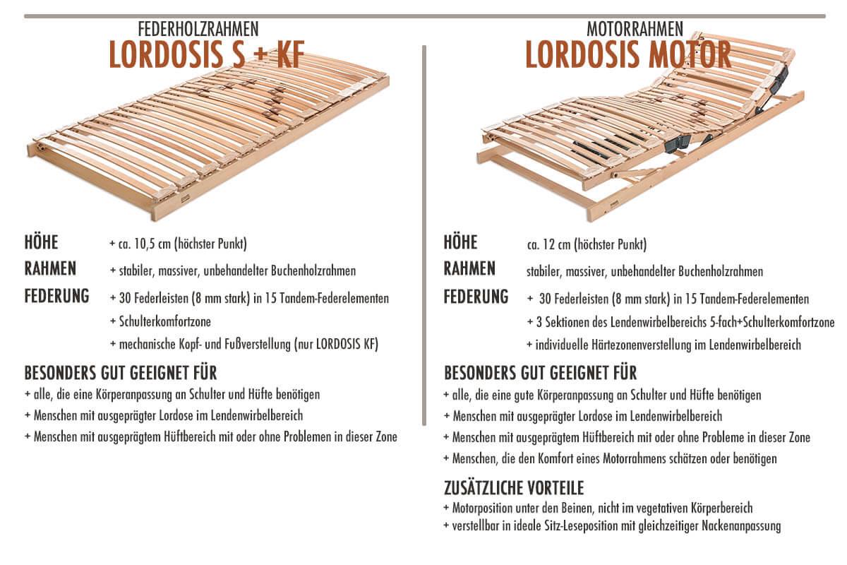 Dormiente-Lordosis-technische-Daten-Produktmerkmale
